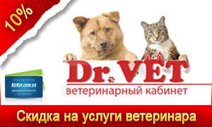 Скидки в ветеринарной клинике Dr.Vet