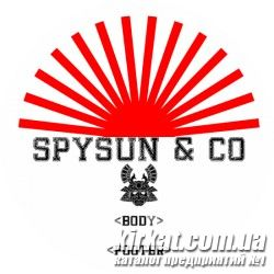 Spysun & Co, веб студия, создание сайтов
