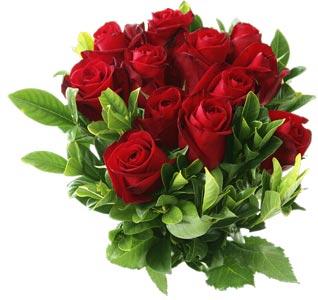 Доставка цветов на дом кировоград где купить комнатные цветы оптом в ростове на дону